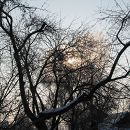 Природа зимой