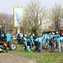Волонтери «Київстар» висадили 10 300 нових дерев